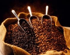 Caféina